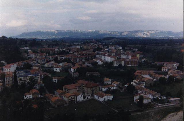 Compañia de luz y gas en Espinosa de los Monteros
