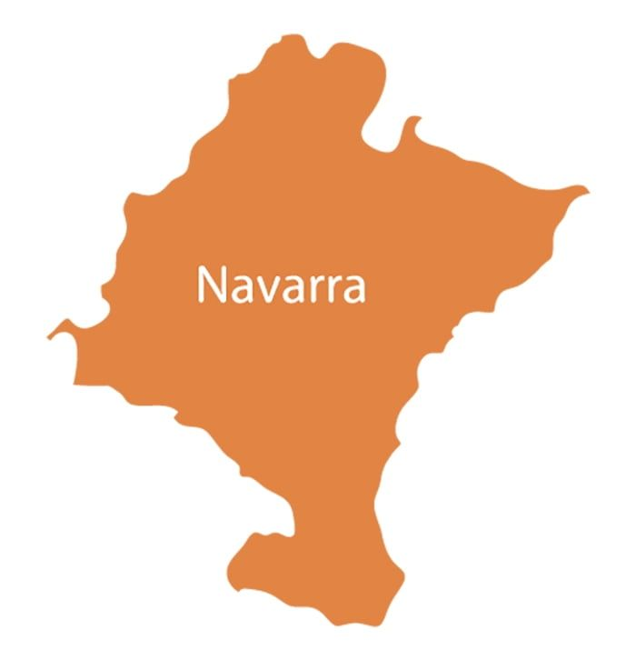 Compañia de luz y gas en Navarra