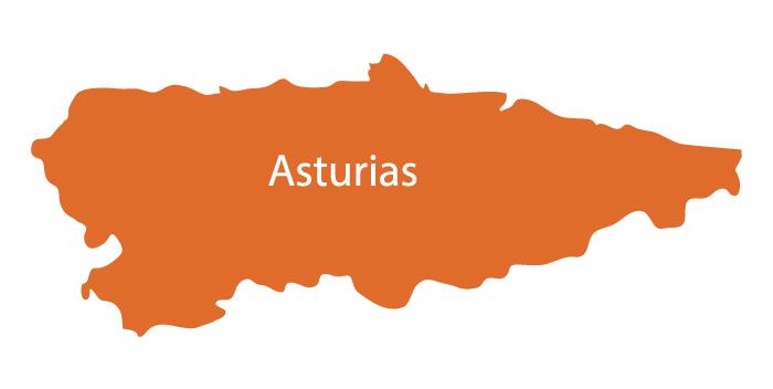 Compañia de luz y gas en Principado de asturias