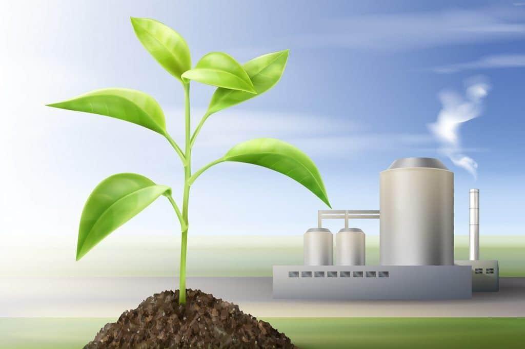 Energía de biocombustible